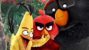 axn-angry-birds-quiz-index