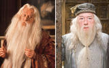axn-harry-potter-actors-who-were-recast-3