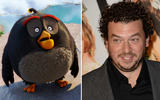axn-who-is-dubbing-angry-birds-3