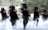 www-swat-training-2