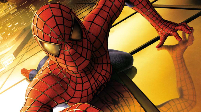 529_spider_kat_0001